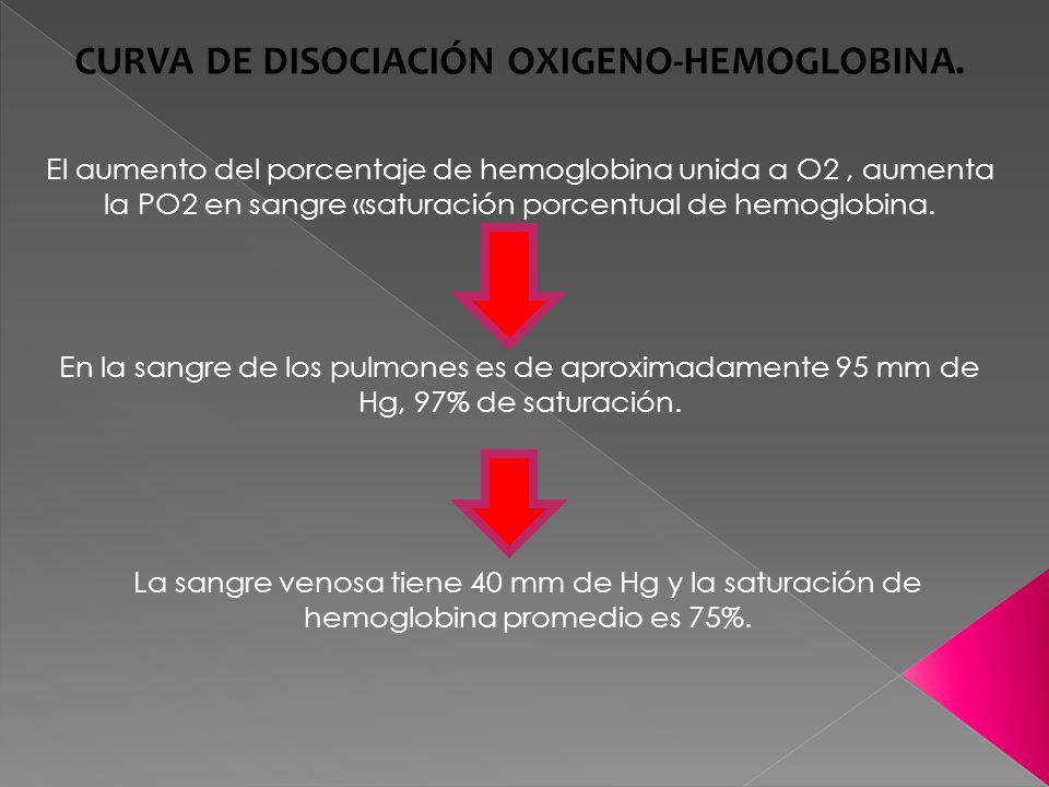 El aumento del porcentaje de hemoglobina unida a O2, aumenta la PO2 en sangre «saturación porcentual de hemoglobina.