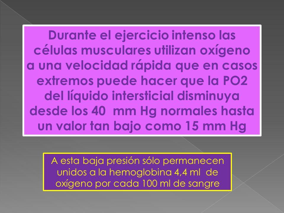 Durante el ejercicio intenso las células musculares utilizan oxígeno a una velocidad rápida que en casos extremos puede hacer que la PO2 del líquido intersticial disminuya desde los 40 mm Hg normales hasta un valor tan bajo como 15 mm Hg A esta baja presión sólo permanecen unidos a la hemoglobina 4,4 ml de oxígeno por cada 100 ml de sangre