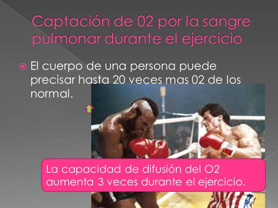 El cuerpo de una persona puede precisar hasta 20 veces mas 02 de los normal.