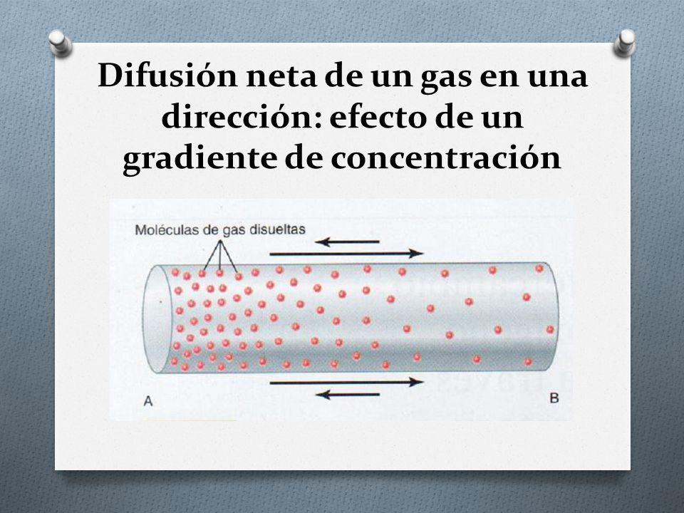 Difusión neta de un gas en una dirección: efecto de un gradiente de concentración