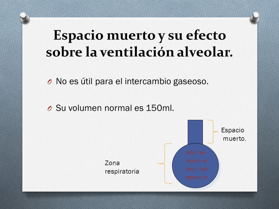Espacio muerto y su efecto sobre la ventilación alveolar. O No es útil para el intercambio gaseoso. O Su volumen normal es 150ml. Espacio muerto. Zona