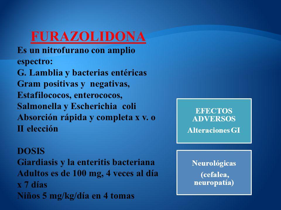 FURAZOLIDONA Es un nitrofurano con amplio espectro: G. Lamblia y bacterias entéricas Gram positivas y negativas, Estafilococos, enterococos, Salmonell