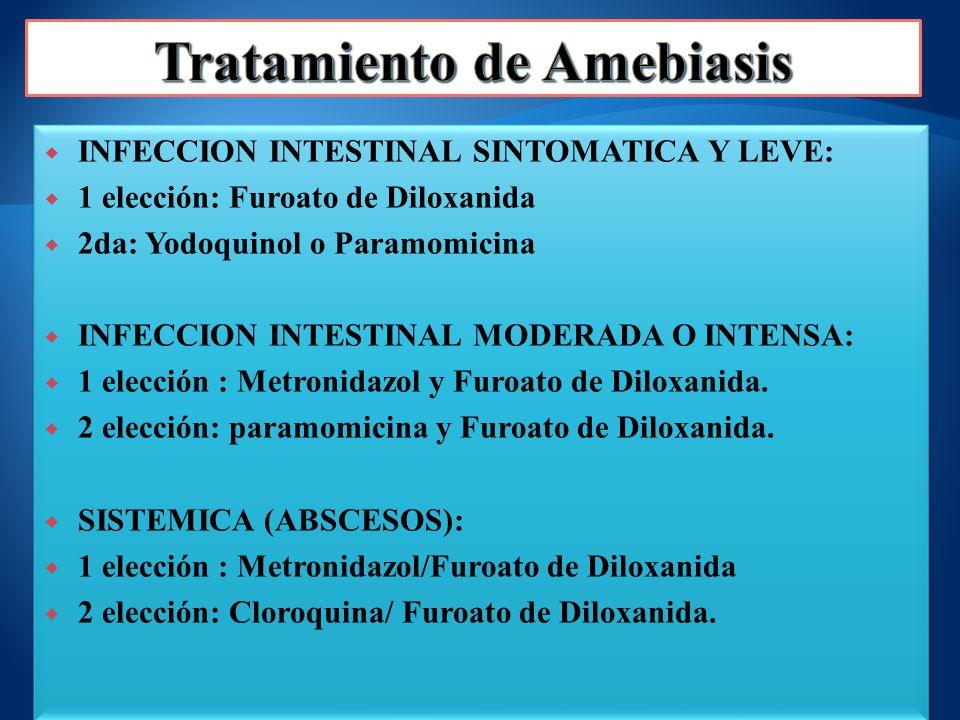INFECCION INTESTINAL SINTOMATICA Y LEVE: 1 elección: Furoato de Diloxanida 2da: Yodoquinol o Paramomicina INFECCION INTESTINAL MODERADA O INTENSA: 1 e