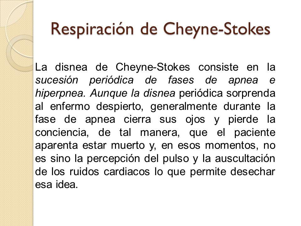 Respiración de Cheyne-Stokes La disnea de Cheyne-Stokes consiste en la sucesión periódica de fases de apnea e hiperpnea.