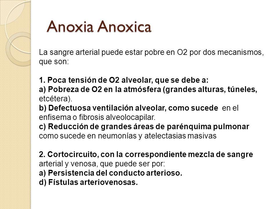 Anoxia Anoxica La sangre arterial puede estar pobre en O2 por dos mecanismos, que son: 1.