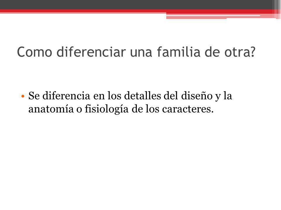 Como diferenciar una familia de otra? Se diferencia en los detalles del diseño y la anatomía o fisiología de los caracteres.