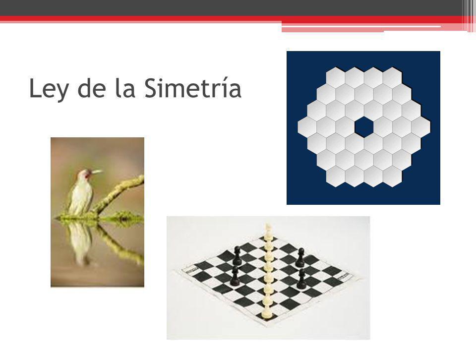 Ley de la Simetría