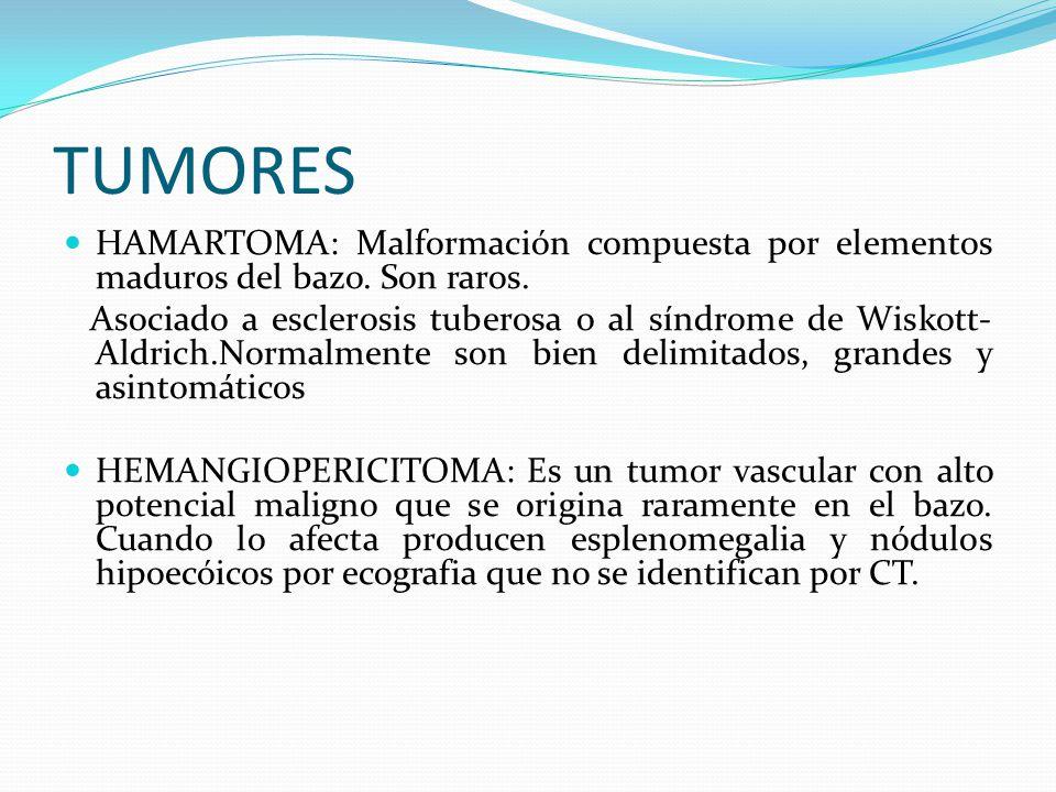 TUMORES ANGIOSARCOMA:Es el más frecuente de los tumores malignos no hematolinfoides.