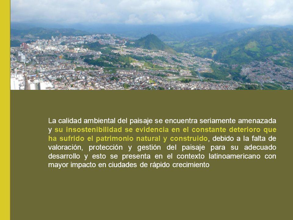 La calidad ambiental del paisaje se encuentra seriamente amenazada y su insostenibilidad se evidencia en el constante deterioro que ha sufrido el patr