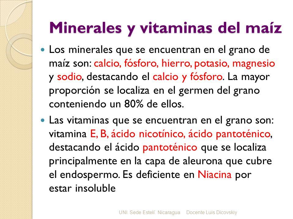 Minerales y vitaminas del maíz Los minerales que se encuentran en el grano de maíz son: calcio, fósforo, hierro, potasio, magnesio y sodio, destacando el calcio y fósforo.
