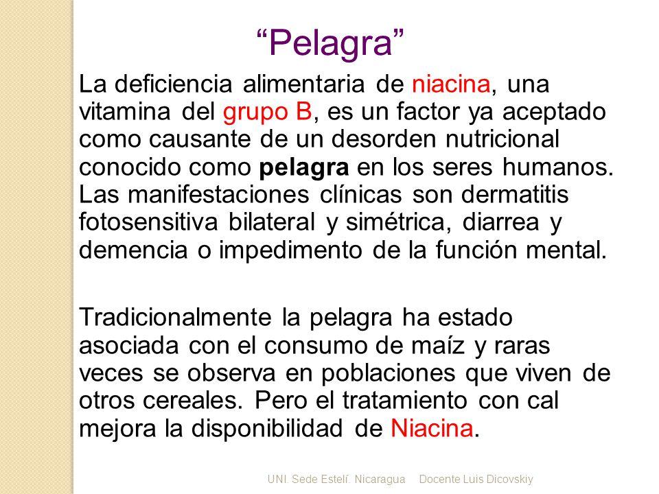 Pelagra La deficiencia alimentaria de niacina, una vitamina del grupo B, es un factor ya aceptado como causante de un desorden nutricional conocido como pelagra en los seres humanos.