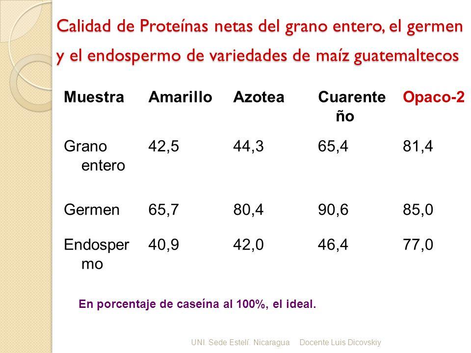 Calidad de Proteínas netas del grano entero, el germen y el endospermo de variedades de maíz guatemaltecos MuestraAmarilloAzoteaCuarente ño Opaco-2 Grano entero 42,544,365,481,4 Germen65,780,490,685,0 Endosper mo 40,942,046,477,0 En porcentaje de caseína al 100%, el ideal.
