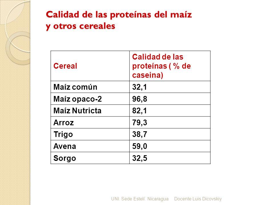 Calidad de las proteínas del maíz y otros cereales Cereal Calidad de las proteínas ( % de caseina) Maíz común32,1 Maíz opaco-296,8 Maíz Nutricta82,1 A