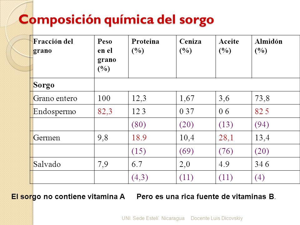 Composición química del sorgo Fracción del grano Peso en el grano (%) Proteina (%) Ceniza (%) Aceite (%) Almidón (%) Sorgo Grano entero10012,31,673,673,8 Endospermo82,312 30 370 682 5 (80)(20)(13)(94) Germen9,818.910,428,113,4 (15)(69)(76)(20) Salvado7,96.72,04.934 6 (4,3)(11) (4) El sorgo no contiene vitamina APero es una rica fuente de vitaminas B.