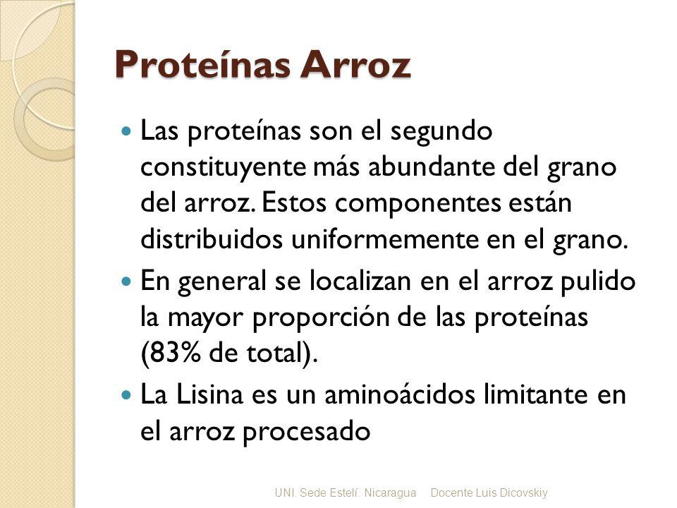 Proteínas Arroz Las proteínas son el segundo constituyente más abundante del grano del arroz.