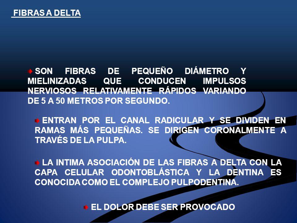 FIBRAS A DELTA SON FIBRAS DE PEQUEÑO DIÁMETRO Y MIELINIZADAS QUE CONDUCEN IMPULSOS NERVIOSOS RELATIVAMENTE RÁPIDOS VARIANDO DE 5 A 50 METROS POR SEGUNDO.