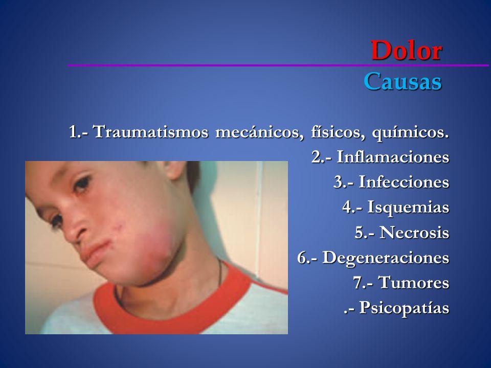 Necrosis pulpar Es la descomposición, séptica o no, del tejido conjuntivo pulpar que cursa con la destrucción, del sistema microvascular y linfático, de las células y en ultima instancia del tejido nervioso CANALDA SAHLI, Carlos, BRAU.