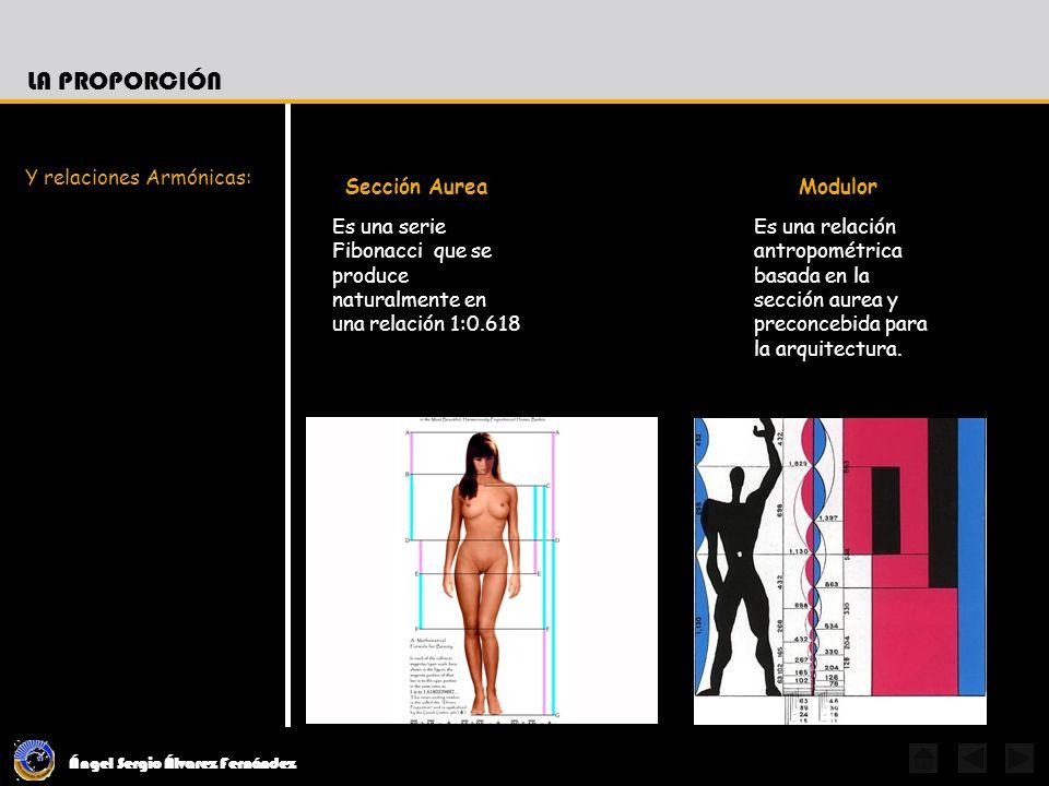 Ángel Sergio Álvarez Fernández LA PROPORCIÓN Es una serie Fibonacci que se produce naturalmente en una relación 1:0.618 Y relaciones Armónicas: Sección Aurea Es una relación antropométrica basada en la sección aurea y preconcebida para la arquitectura.