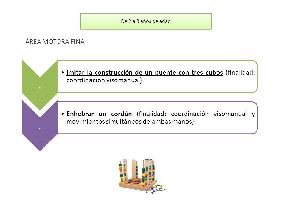 . Imitar la construcción de un puente con tres cubos (finalidad: coordinación visomanual). Enhebrar un cordón (finalidad: coordinación visomanual y mo