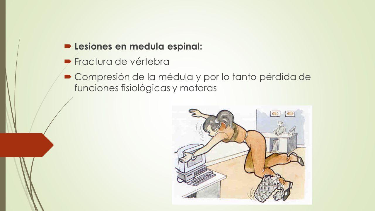 Lesiones en medula espinal: Fractura de vértebra Compresión de la médula y por lo tanto pérdida de funciones fisiológicas y motoras