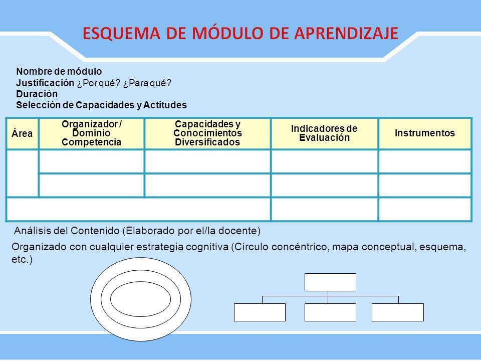 Área Organizador / Dominio Competencia Capacidades y Conocimientos Diversificados Indicadores de Evaluación Instrumentos Análisis del Contenido (Elabo