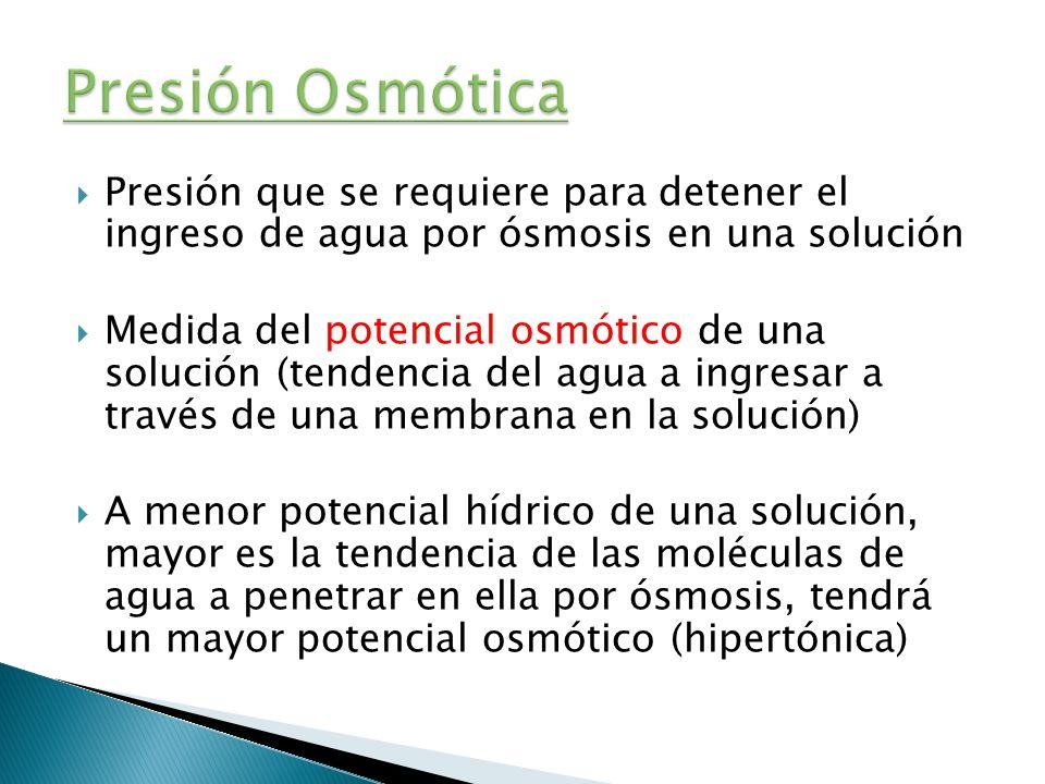 Presión que se requiere para detener el ingreso de agua por ósmosis en una solución Medida del potencial osmótico de una solución (tendencia del agua