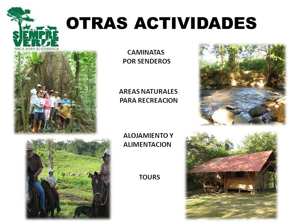 OTRAS ACTIVIDADES TOURS CAMINATAS POR SENDEROS ALOJAMIENTO Y ALIMENTACION AREAS NATURALES PARA RECREACION