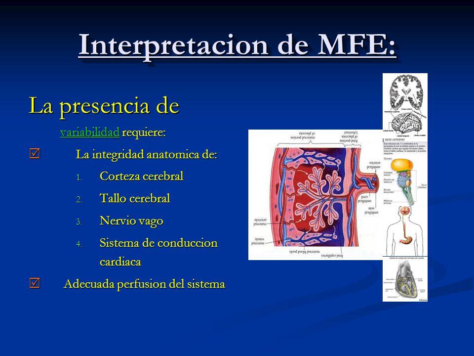 Interpretacion de MFE: La presencia de variabilidad requiere: La integridad anatomica de: La integridad anatomica de: 1. Corteza cerebral 2. Tallo cer