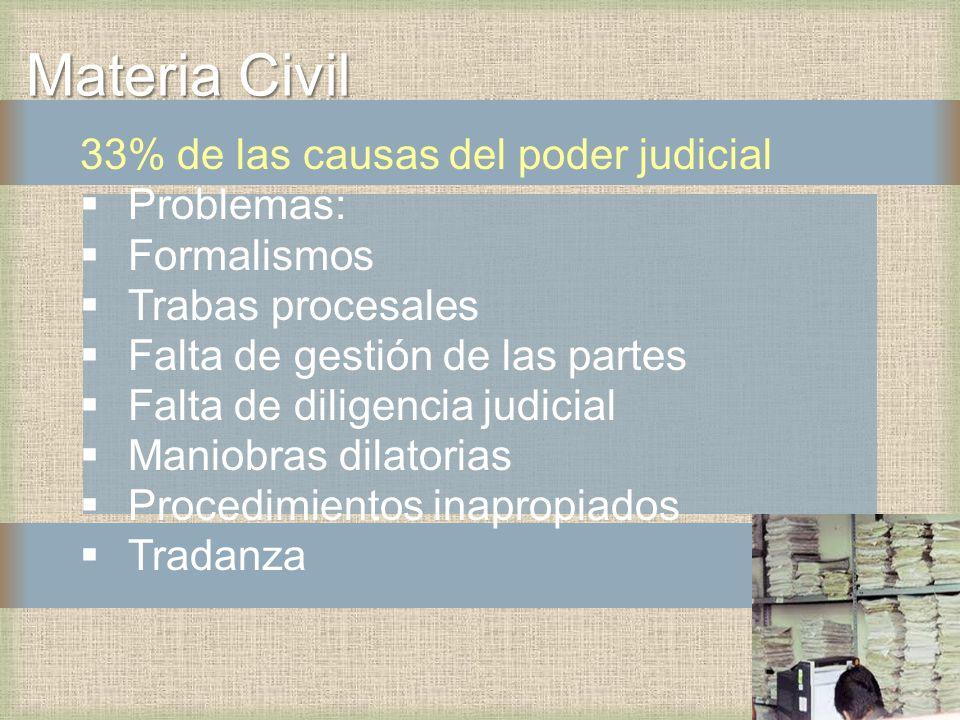 Materia Civil 33% de las causas del poder judicial Problemas: Formalismos Trabas procesales Falta de gestión de las partes Falta de diligencia judicial Maniobras dilatorias Procedimientos inapropiados Tradanza