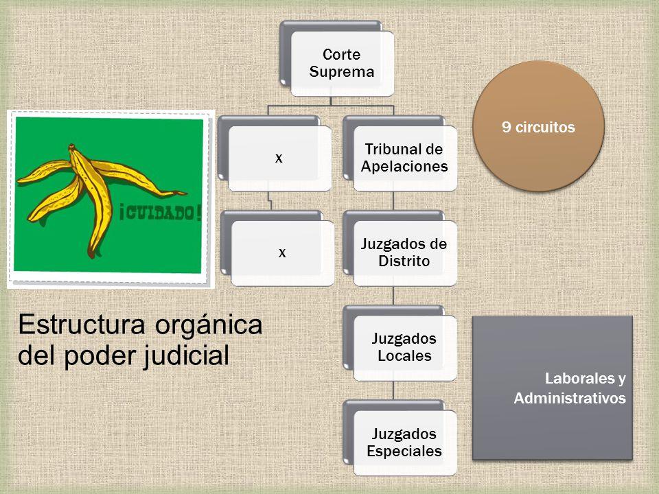 Estructura orgánica del poder judicial Corte Suprema xx Tribunal de Apelaciones Juzgados de Distrito Juzgados Locales Juzgados Especiales 9 circuitos Laborales y Administrativos Laborales y Administrativos