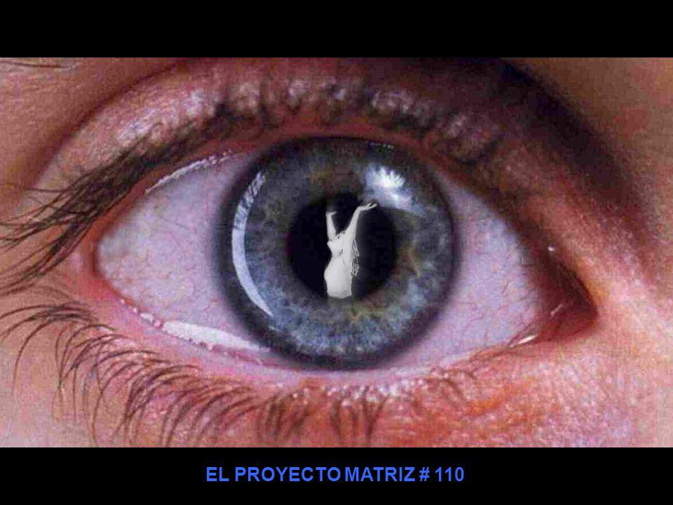 EL PROYECTO MATRIZ # 110