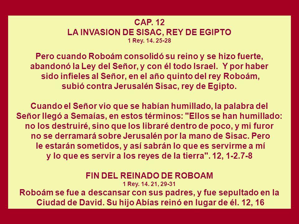 Cap. 11 LA DIVISION DEL REINO. 1 Rey. 12. 21-24 ADHESION DE LOS SACERDOTES Y LEVITAS A ROBOAM. En efecto, los levitas abandonaron sus campos de pastor