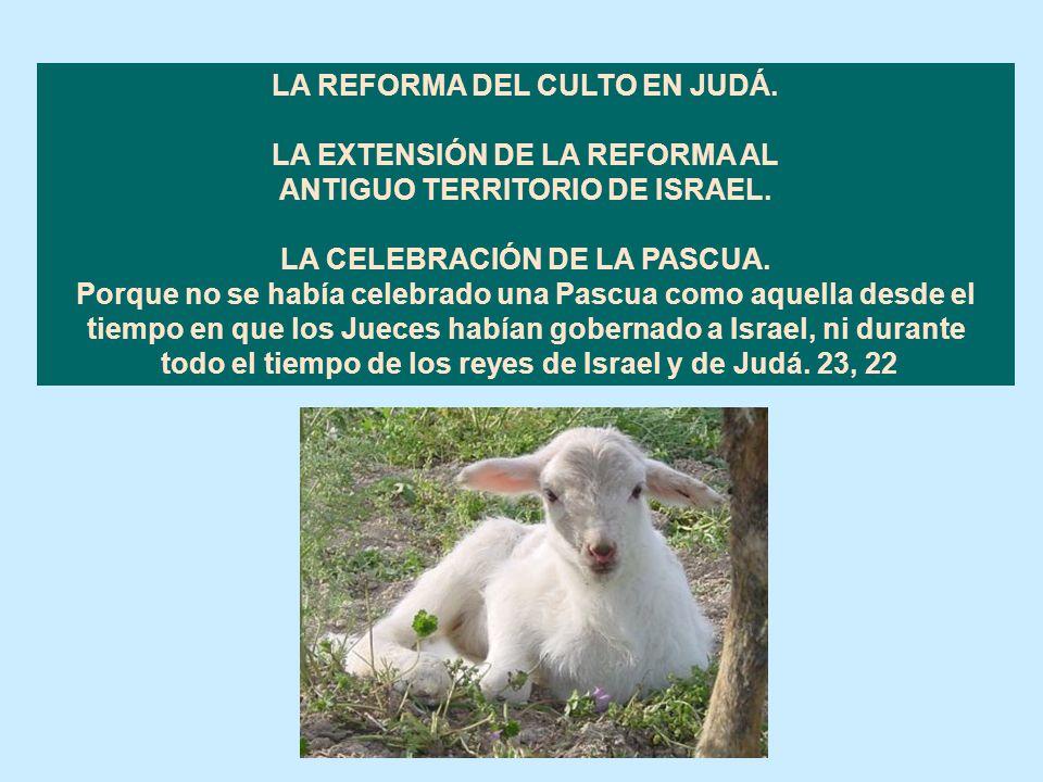 Cap. 23 LA LECTURA DE LA LEY Y LA RENOVACIÓN DE LA ALIANZA. El rey mandó que se reunieran junto a él todos los ancianos de Judá y de Jerusalén. Luego