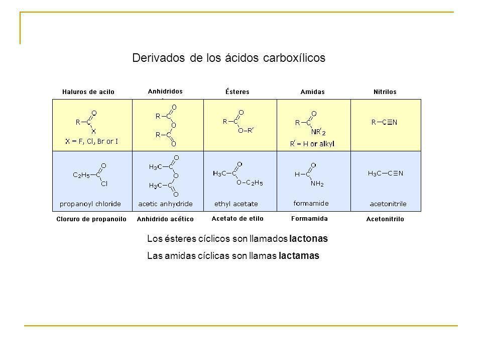 Derivados de los ácidos carboxílicos Los ésteres cíclicos son llamados lactonas Las amidas cíclicas son llamas lactamas