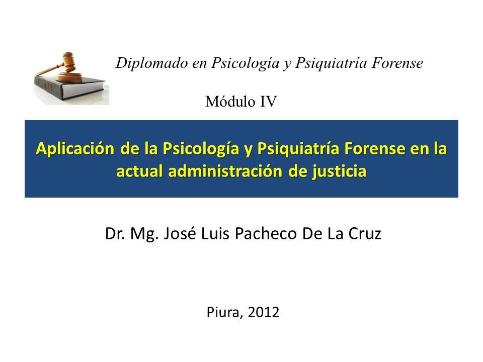 Esquema e interpretación del Informe Pericial de Psiquiatría Forense MINISTERIO PUBLICO INSTITUTO DE MEDICINA LEGAL DIVISION …………………………………….