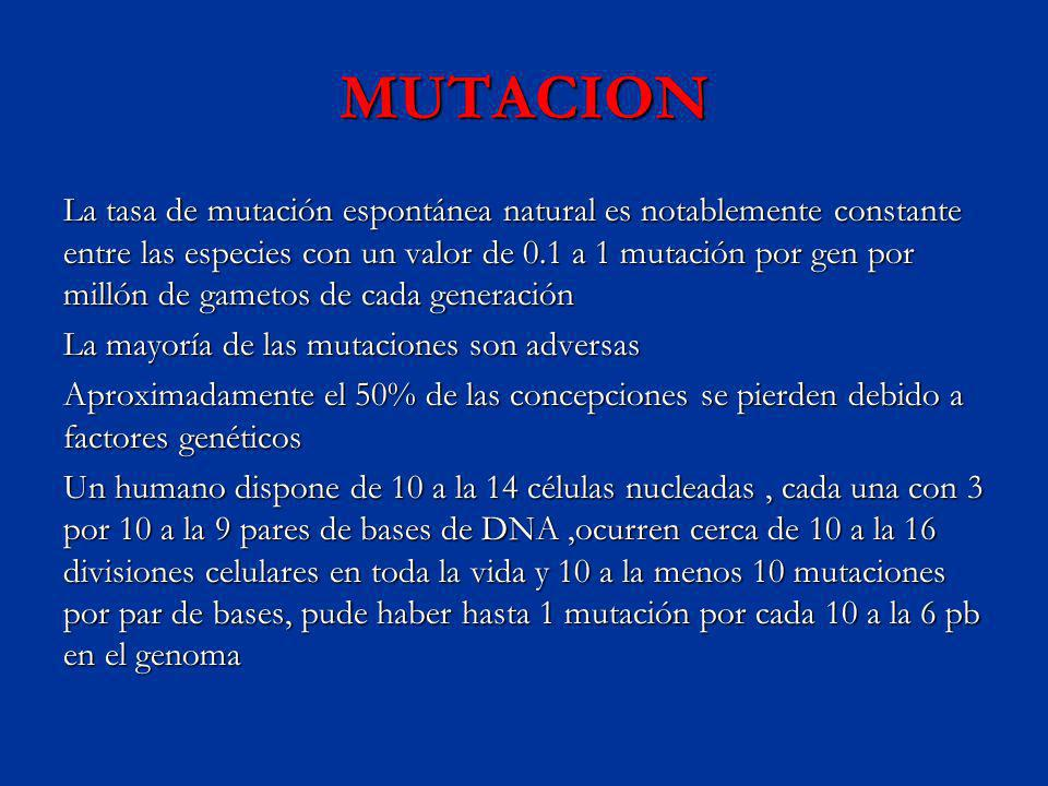 MUTACION La tasa de mutación espontánea natural es notablemente constante entre las especies con un valor de 0.1 a 1 mutación por gen por millón de ga