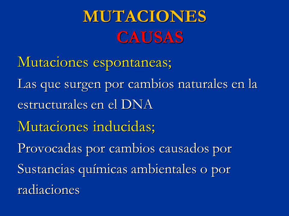 MUTACIONES CAUSAS Mutaciones espontaneas; Las que surgen por cambios naturales en la estructurales en el DNA Mutaciones inducidas; Provocadas por camb