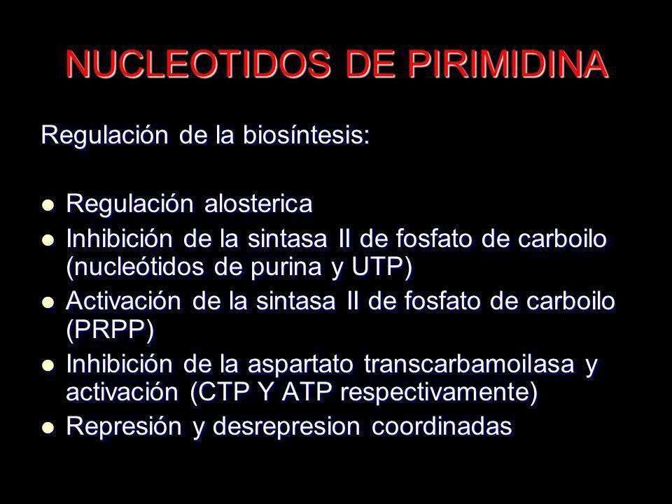 NUCLEOTIDOS DE PIRIMIDINA Regulación de la biosíntesis: Regulación alosterica Regulación alosterica Inhibición de la sintasa II de fosfato de carboilo