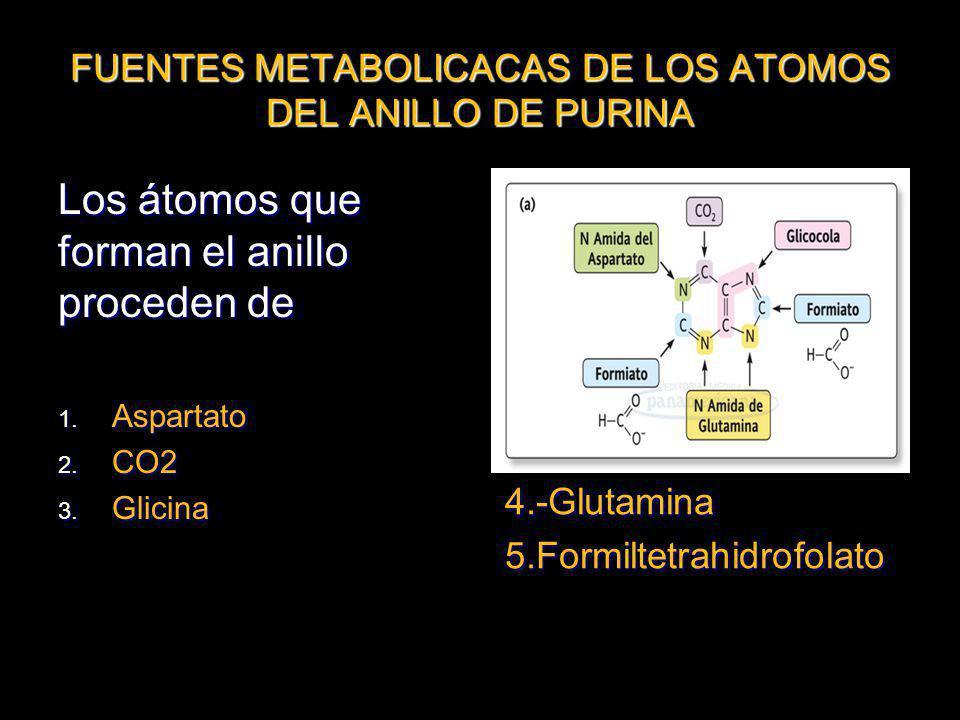 FUENTES METABOLICACAS DE LOS ATOMOS DEL ANILLO DE PURINA Los átomos que forman el anillo proceden de 1. Aspartato 2. CO2 3. Glicina 4.-Glutamina5.Form