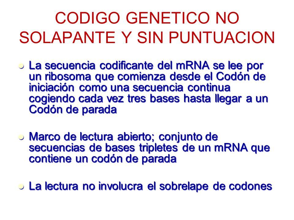 CODIGO GENETICO NO SOLAPANTE Y SIN PUNTUACION La secuencia codificante del mRNA se lee por un ribosoma que comienza desde el Codón de iniciación como