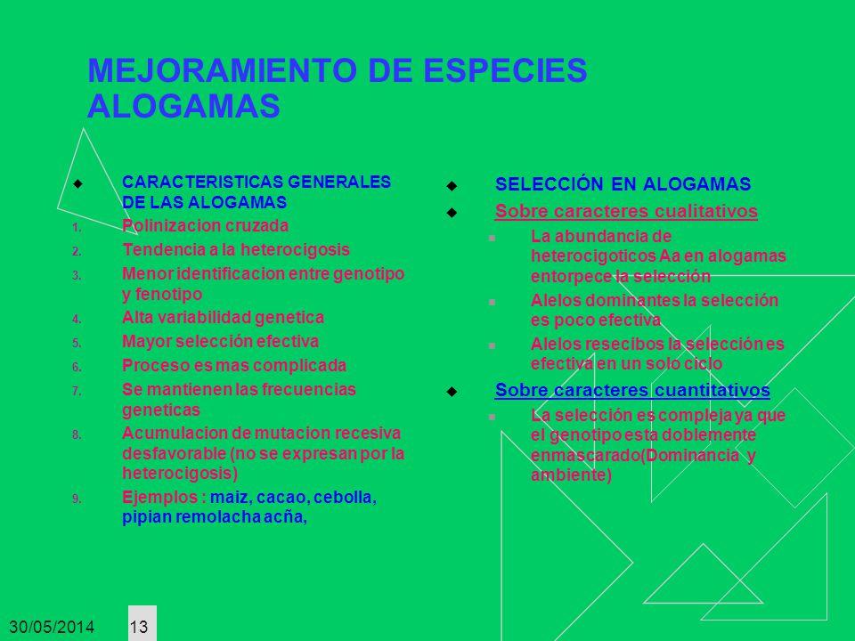 30/05/2014 13 MEJORAMIENTO DE ESPECIES ALOGAMAS CARACTERISTICAS GENERALES DE LAS ALOGAMAS 1. Polinizacion cruzada 2. Tendencia a la heterocigosis 3. M