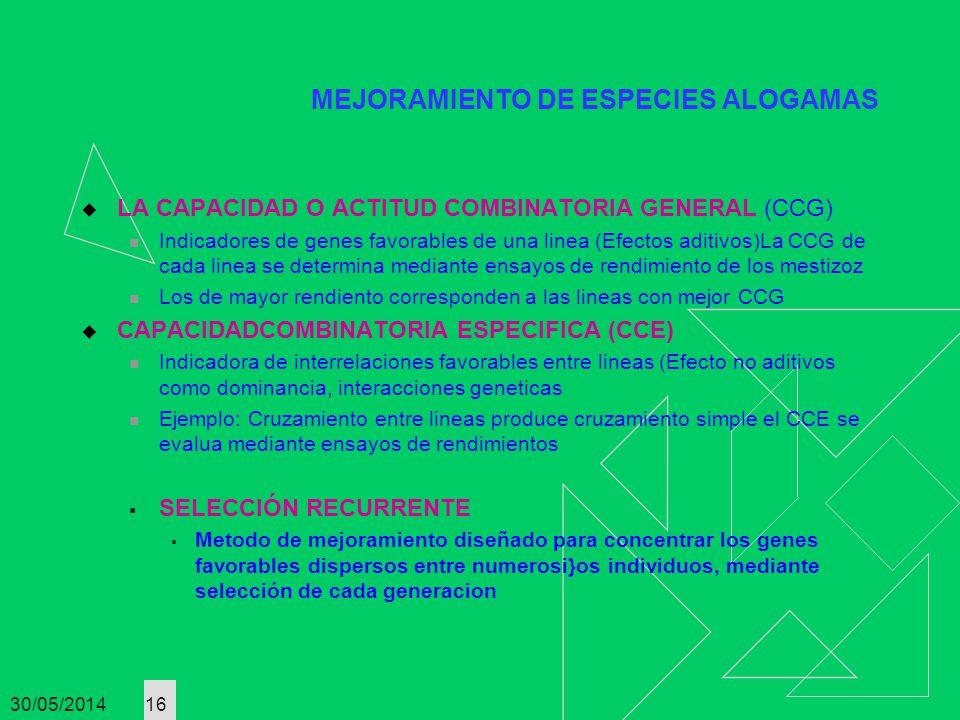 30/05/2014 16 MEJORAMIENTO DE ESPECIES ALOGAMAS LA CAPACIDAD O ACTITUD COMBINATORIA GENERAL (CCG) Indicadores de genes favorables de una linea (Efecto