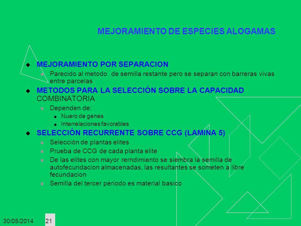 30/05/2014 21 MEJORAMIENTO POR SEPARACION Parecido al metodo de semilla restante pero se separan con barreras vivas entre parcelas METODOS PARA LA SEL