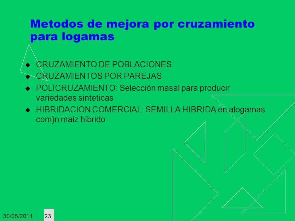 30/05/2014 23 Metodos de mejora por cruzamiento para logamas CRUZAMIENTO DE POBLACIONES CRUZAMIENTOS POR PAREJAS POLICRUZAMIENTO: Selección masal para