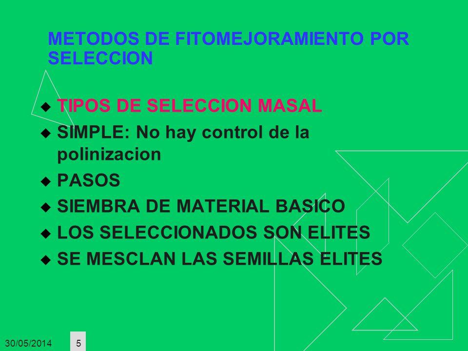 30/05/2014 5 METODOS DE FITOMEJORAMIENTO POR SELECCION TIPOS DE SELECCION MASAL SIMPLE: No hay control de la polinizacion PASOS SIEMBRA DE MATERIAL BA