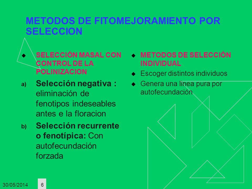 30/05/2014 6 METODOS DE FITOMEJORAMIENTO POR SELECCION SELECCIÓN MASAL CON CONTROL DE LA POLINIZACION a) Selección negativa : eliminación de fenotipos