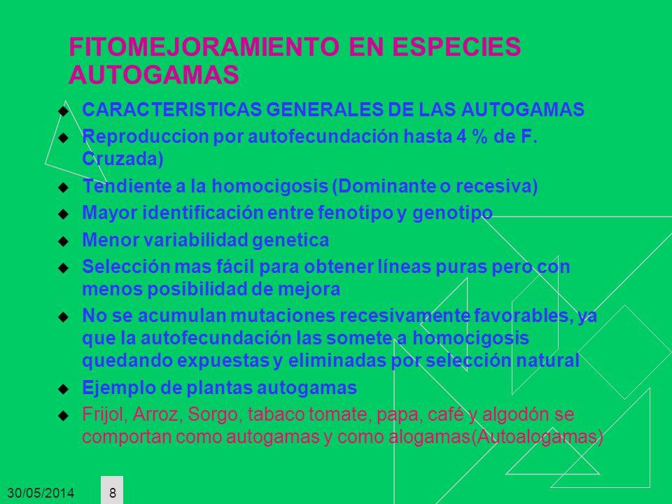 30/05/2014 8 FITOMEJORAMIENTO EN ESPECIES AUTOGAMAS CARACTERISTICAS GENERALES DE LAS AUTOGAMAS Reproduccion por autofecundación hasta 4 % de F. Cruzad