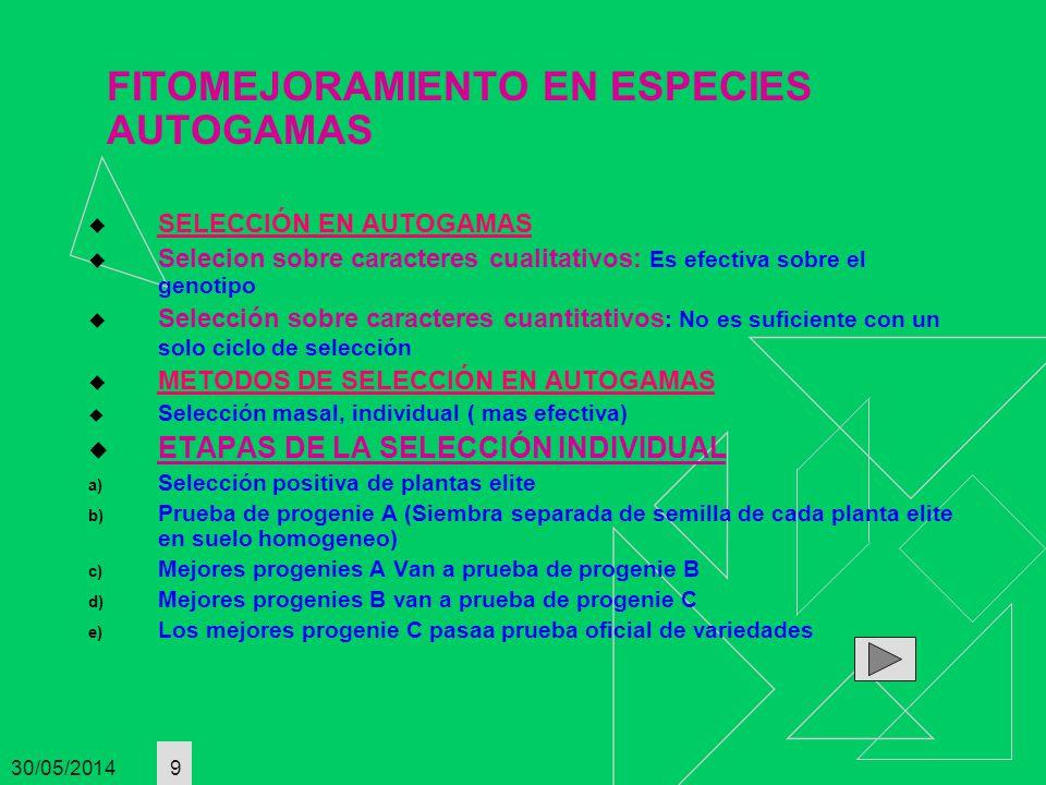 30/05/2014 10 METODOS DE MEJORA POR CRUZAMIENTO EN AUTOGAMAS A.GENEALOGICO O DE PEDIGRI A.Después de la hibridación de dos variedades se van seleccionando plantas elites desde la F2 durante varias generaciones hasta conseguir lineas homocigoticas a las que se les aplica las pruebas de A, B Y C(7 generaciones filiales) B.