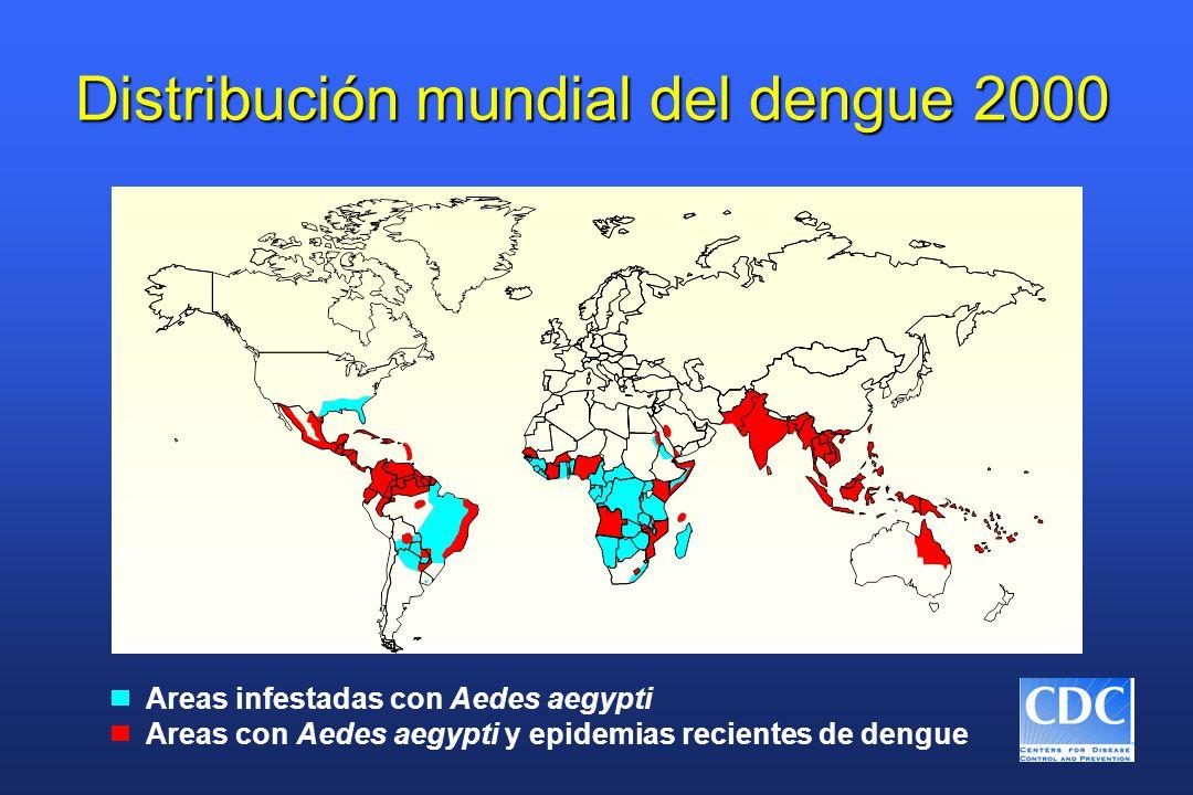 Distribución mundial del dengue 2000 Areas infestadas con Aedes aegypti Areas con Aedes aegypti y epidemias recientes de dengue