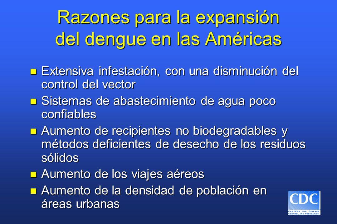 Razones para la expansión del dengue en las Américas n Extensiva infestación, con una disminución del control del vector n Sistemas de abastecimiento